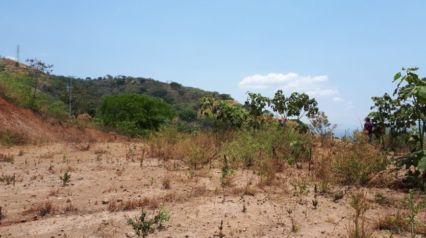 Building lots for sale near Atenas, Costa Rica
