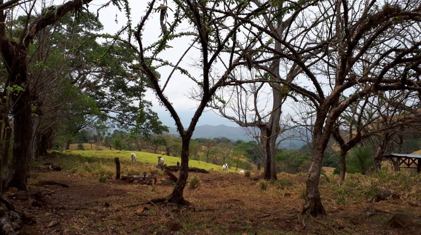 Land for sale in Costa Rica, Escobal de Atenas