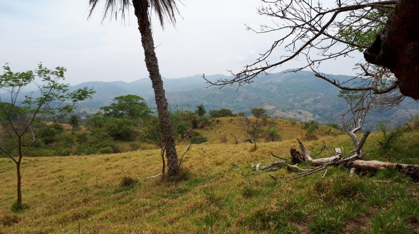 land for sale, Atenas, Costa Rica, real estate