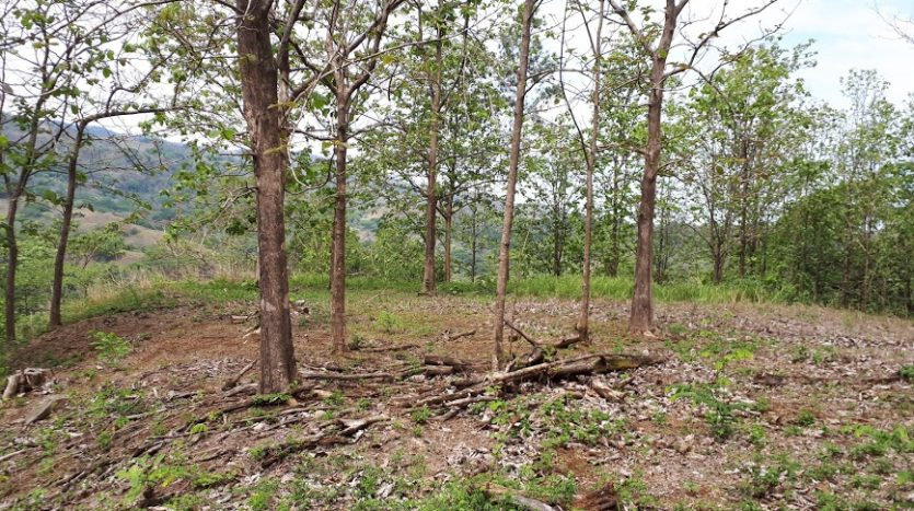 Lot for sale, highway 27, Costa Rica