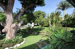 Garden of hotel for sale in Atenas, Costa Rica
