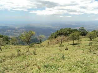378 acre farm for sale near Orotina Costa Rica