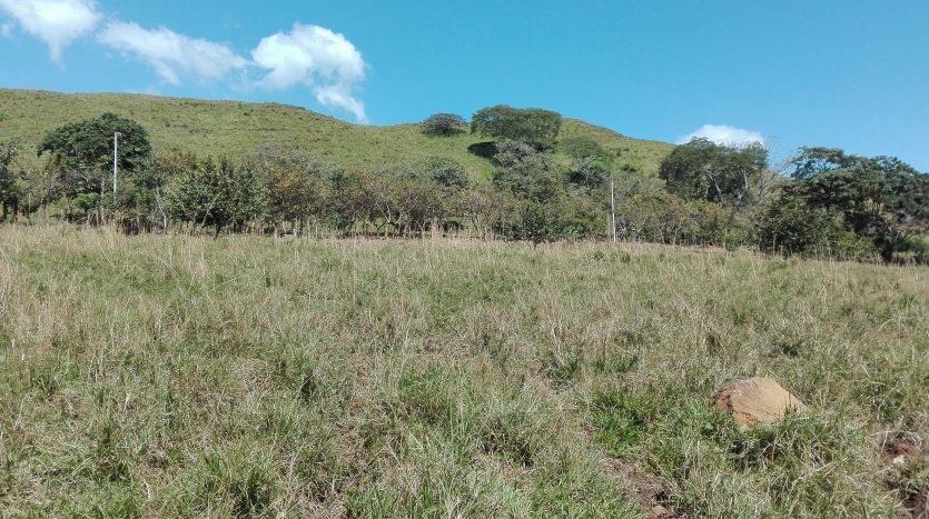 Land, real estate for sale, Atenas Costa Rica