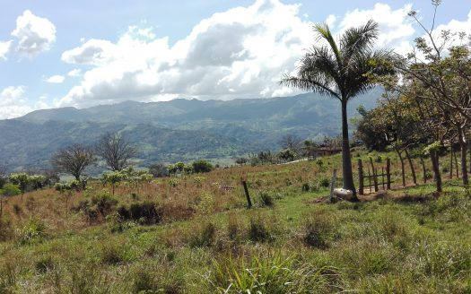Land for sale, Atenas, Costa Rica, development