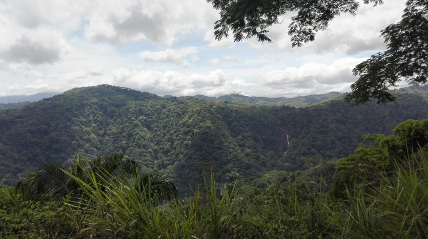 Development property for sale, forest Costa Rica