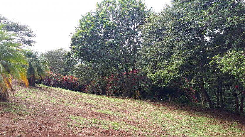Costa Rica real estate lot for sale in Naranjo
