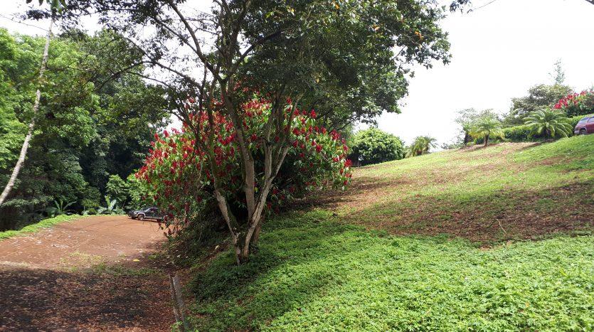 Building lot for sale near Naranjo Costa Rica