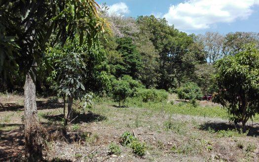 Costa Rica property for sale in Atenas