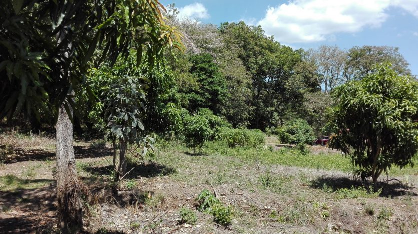 Costa Rica property for sale in Atenas