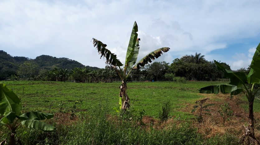 Costa Rica real estate lots for sale in Atenas