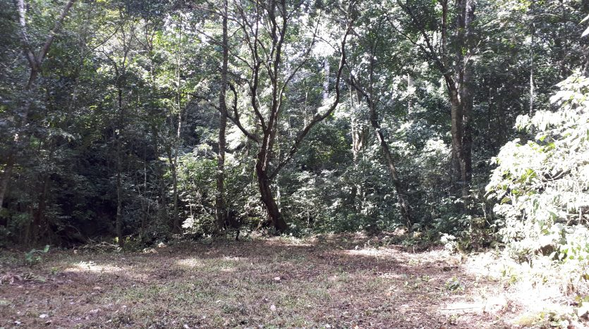 Atenas real estate building lots for sale in Costa Rica
