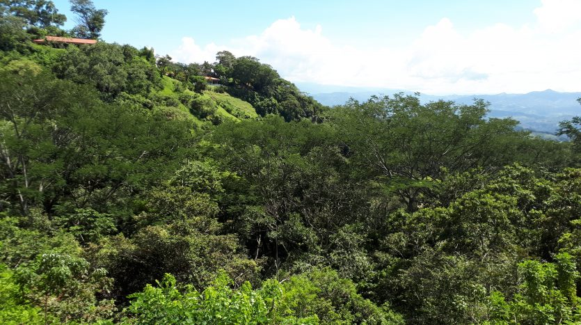 house lot for sale by Atenas real estate in Costa Rica