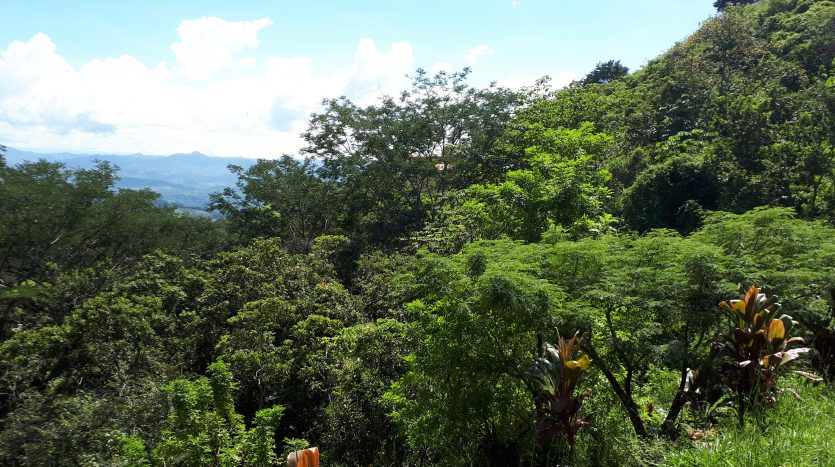 costa rica zillow lot for sale in Atenas