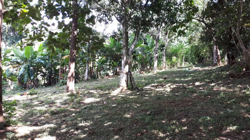 Atenas real estate sale of home building lot in Costa Rica