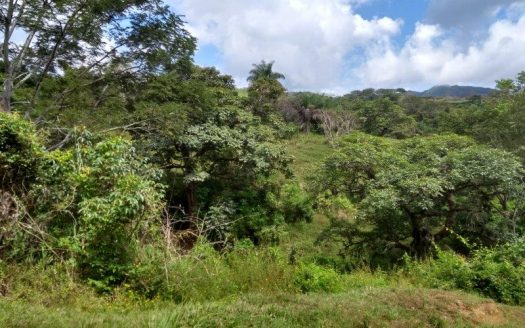 building lots for sale by atenas real estate in costa rica