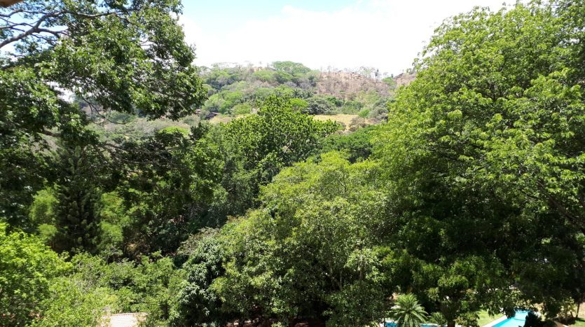 land and houses for sale in best climate costa rica