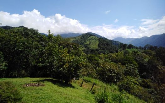 atenas real estate offers farms abd land for sale in costa rica