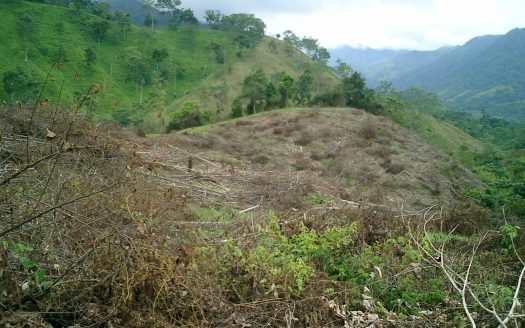 atenas real estate land for sale in costa rica