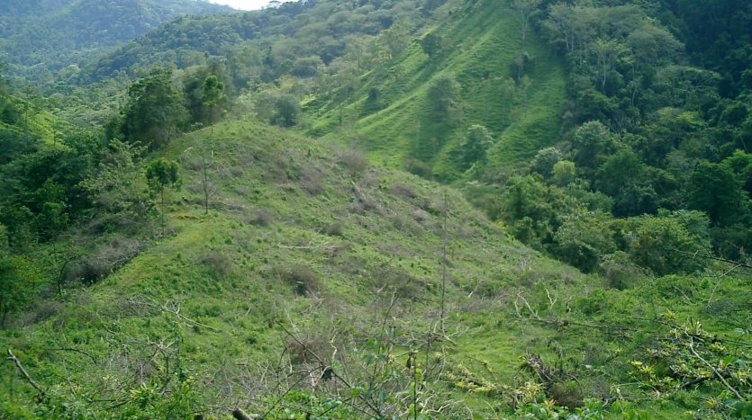 land for sale in nature in costa rica
